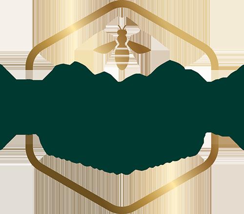 Hayashi Própolis